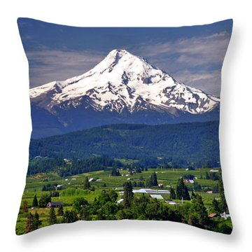 Wine Country Throw Pillow by Scott Mahon