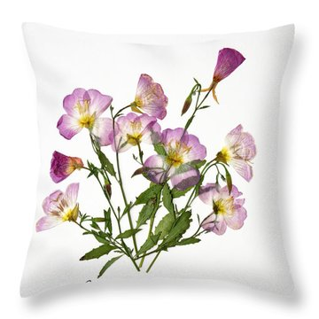 Wine-cup And Primrose Throw Pillow