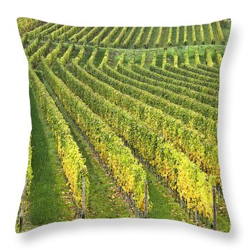 Wine Growing Throw Pillow by Heiko Koehrer-Wagner