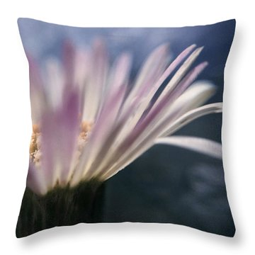 Wine In The Sky Throw Pillow