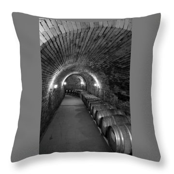 Wine In Waiting Throw Pillow