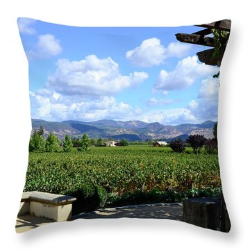 Throw Pillow featuring the photograph Wine Please by Corinne Rhode