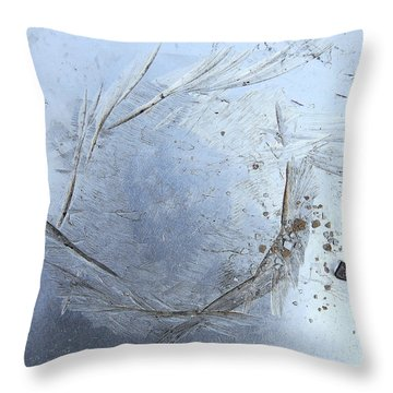 Wing Circle Throw Pillow