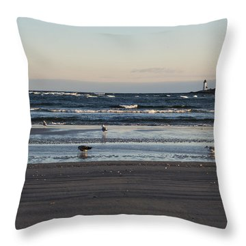 Wingaersheek Beach Seagulls At Sunrise Throw Pillow