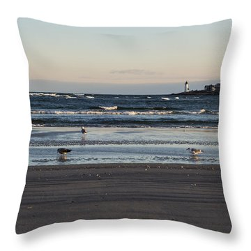 Wingaersheek Beach Seagulls At Sunrise Throw Pillow