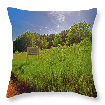 Wingate Prairie Throw Pillow