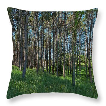 Wingate Prairie Veteran Acres Park Pines Crystal Lake Il Throw Pillow
