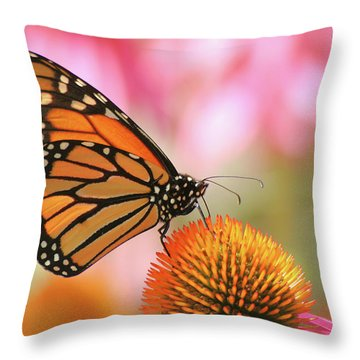 Throw Pillow featuring the photograph Winged Beauty by Doris Potter