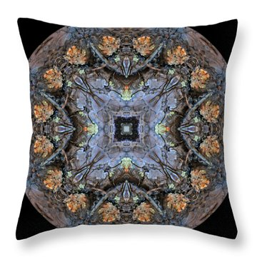 Winged Creatures In A Star Kaleidoscope #2 Throw Pillow