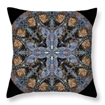 Winged Creatures In A Star Kaleidoscope #3 Throw Pillow