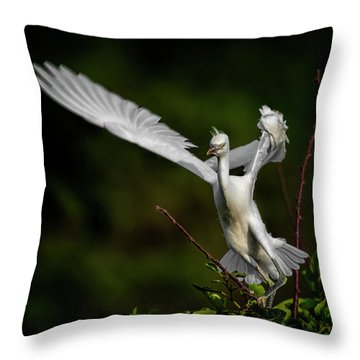 Winged Throw Pillow