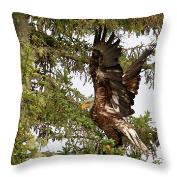 Throw Pillow featuring the photograph Winging-it Up The Tree 1 by Debbie Stahre