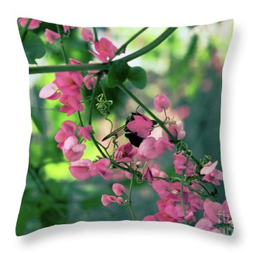 Throw Pillow featuring the photograph Wings by Megan Dirsa-DuBois