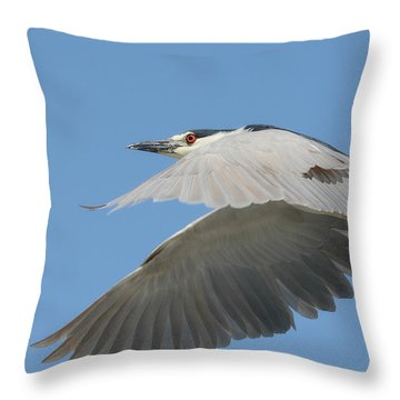 Wings Of Fancy Throw Pillow by Fraida Gutovich