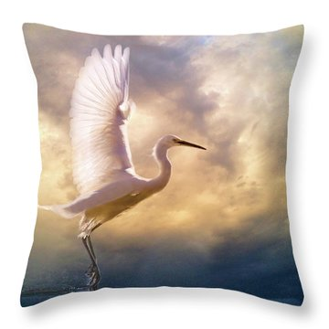 Wings Of Light Throw Pillow