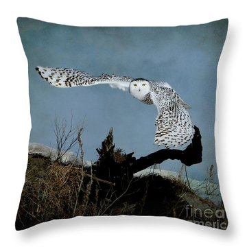Wings Of Winter Throw Pillow