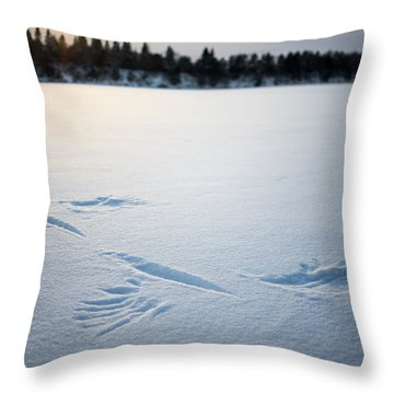 Wings On The Mississippi Near Rice Mn Throw Pillow