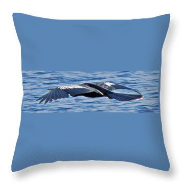 Wings Over Water Throw Pillow