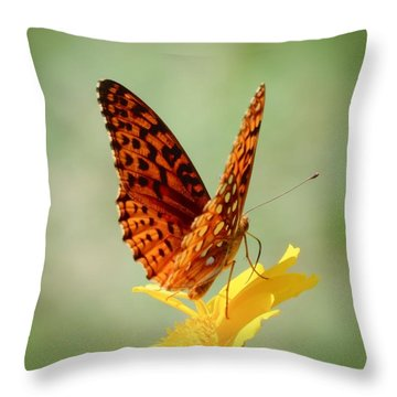 Wings Up - Butterfly Throw Pillow by MTBobbins Photography