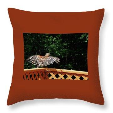 Wingspan Of Hawk Throw Pillow