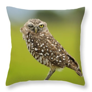 Winking Owl Throw Pillow