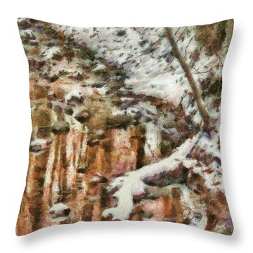 Winter - Natures Harmony Painted Throw Pillow by Mike Savad