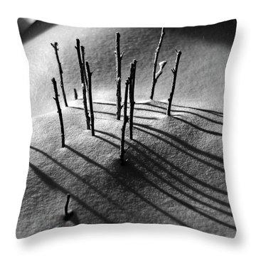 Winter 5 Throw Pillow by Alex Galkin