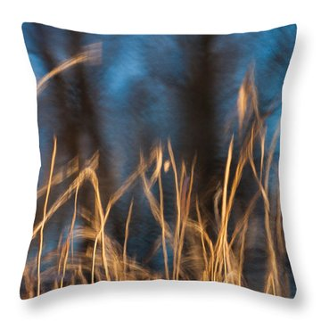Throw Pillow featuring the photograph Winter Afternoon Impressions  by Davorin Mance