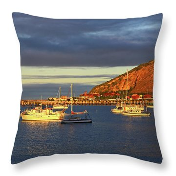 Throw Pillow featuring the photograph Winter Afternoon Sun At Friendly Bay by Nareeta Martin