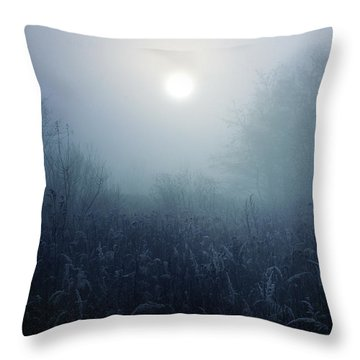 Winter Afternoon - Poland Throw Pillow
