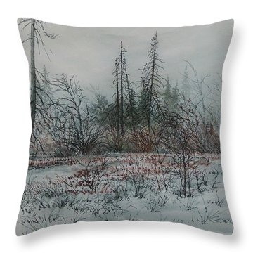 Winter, Alberta Throw Pillow