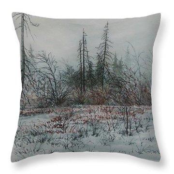 Winter, Alberta Throw Pillow