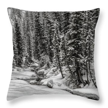 Winter Alpine Creek II Throw Pillow