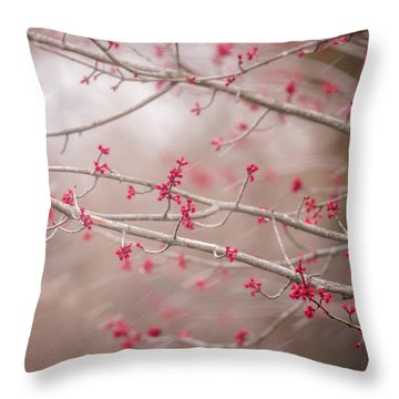 Throw Pillow featuring the photograph Winter And Spring by Terry DeLuco