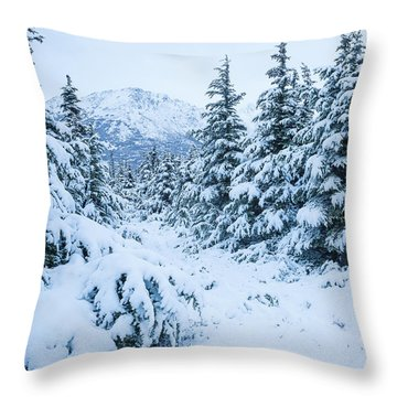 Throw Pillow featuring the photograph Winter Arrives by Tim Newton