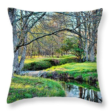 Throw Pillow featuring the photograph Winter Artistry by Dan Carmichael