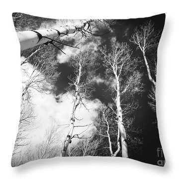 Winter Aspens Throw Pillow