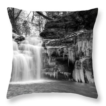 Winter At Big Falls  Throw Pillow