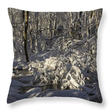 Winter At Borden Brook Throw Pillow