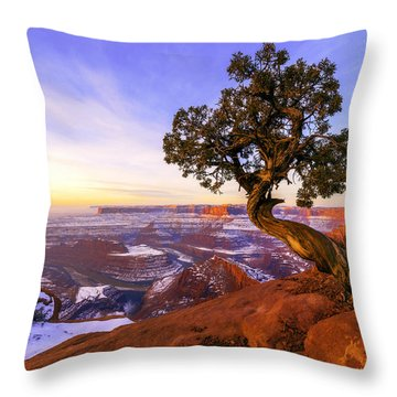 Winter At Dead Horse Throw Pillow