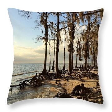 Winter At Fontainebleau State Park, Lake Pontchartrain, La Throw Pillow