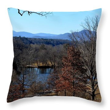 Winter At The Biltmore Throw Pillow by Janice Spivey