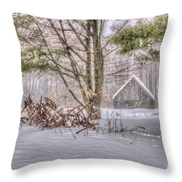 Winter At The Woods Throw Pillow