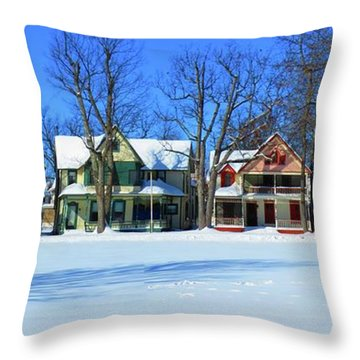 Winter At Ti Park Throw Pillow