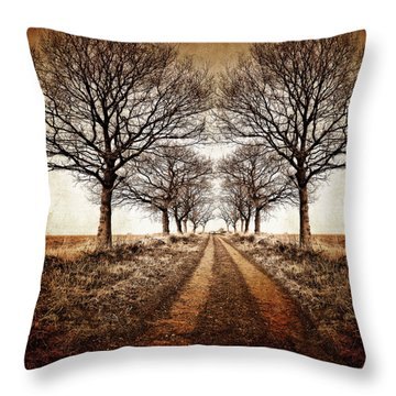 Winter Avenue Throw Pillow
