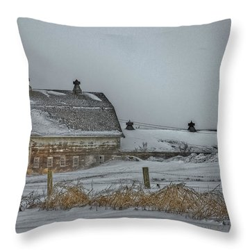 Winter Barn Throw Pillow by Edward Peterson