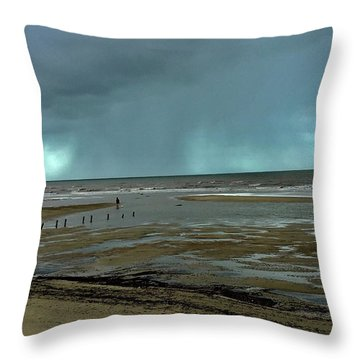 Throw Pillow featuring the photograph Winter Beach by Debbie Cundy