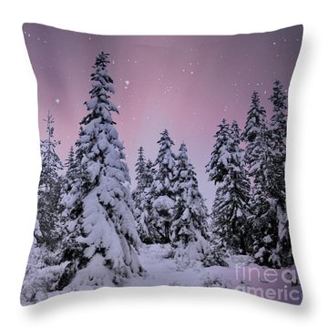 Winter Beauty Throw Pillow by Sheila Ping