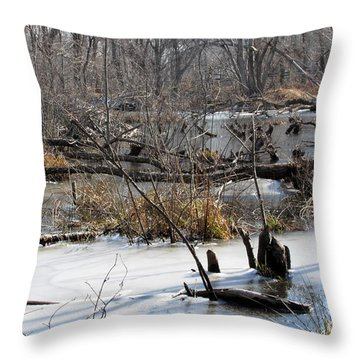Winter Beaver Bog Throw Pillow