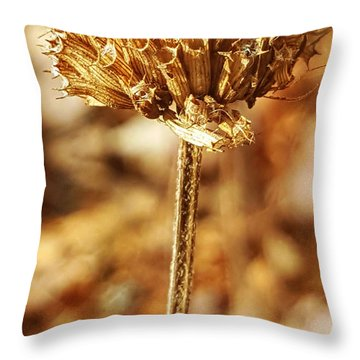 Throw Pillow featuring the photograph Winter Bee Balm by Bruce Carpenter